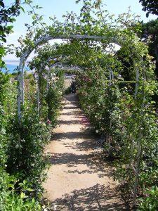 Jardin de la villa Les Rhumbs